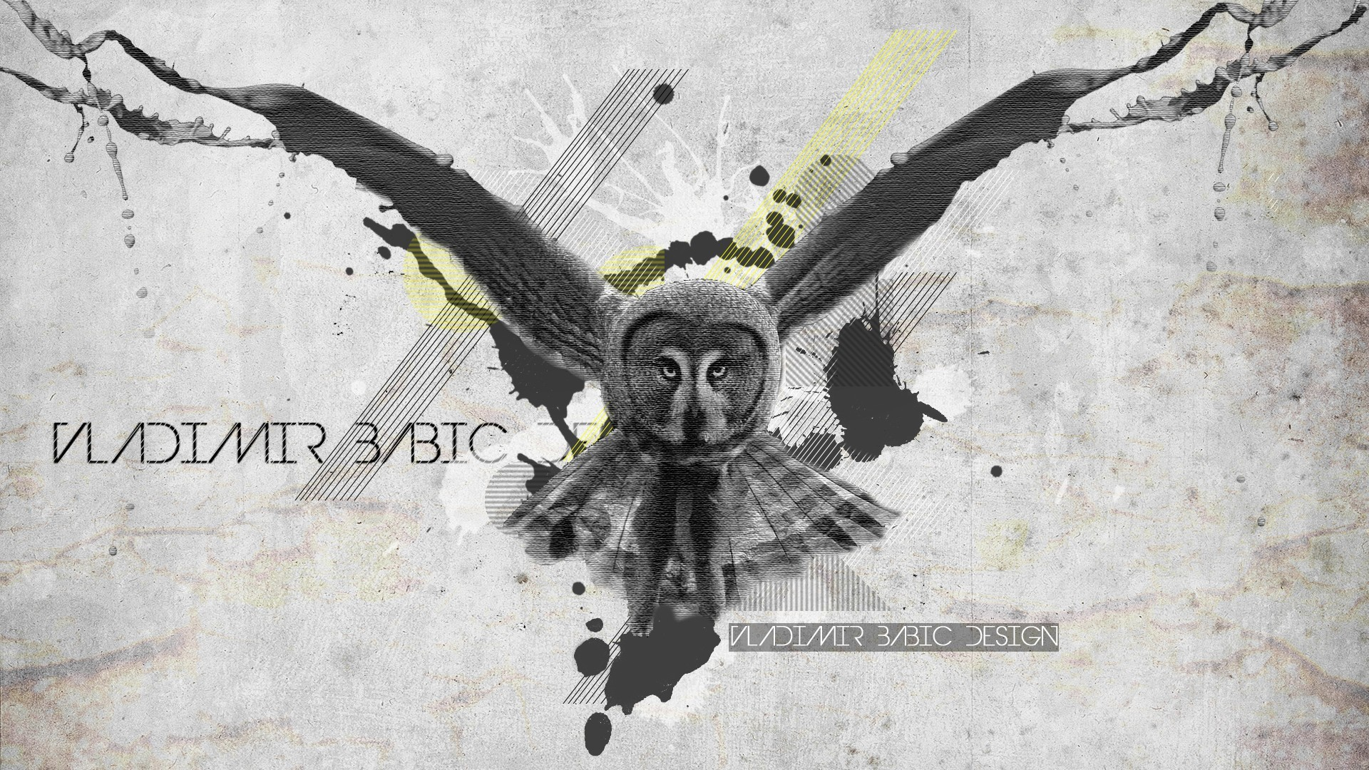 abstract Birds design Owls HD Wallpaper