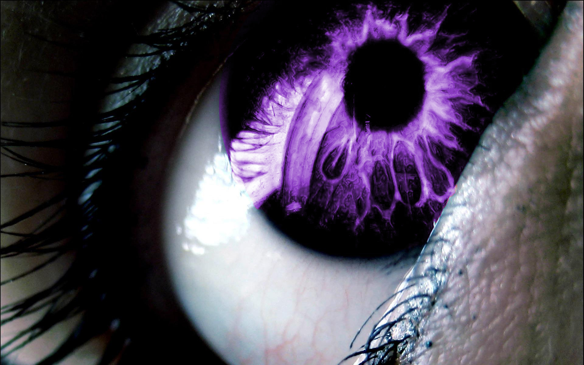 abstract eyes purple photo HD Wallpaper