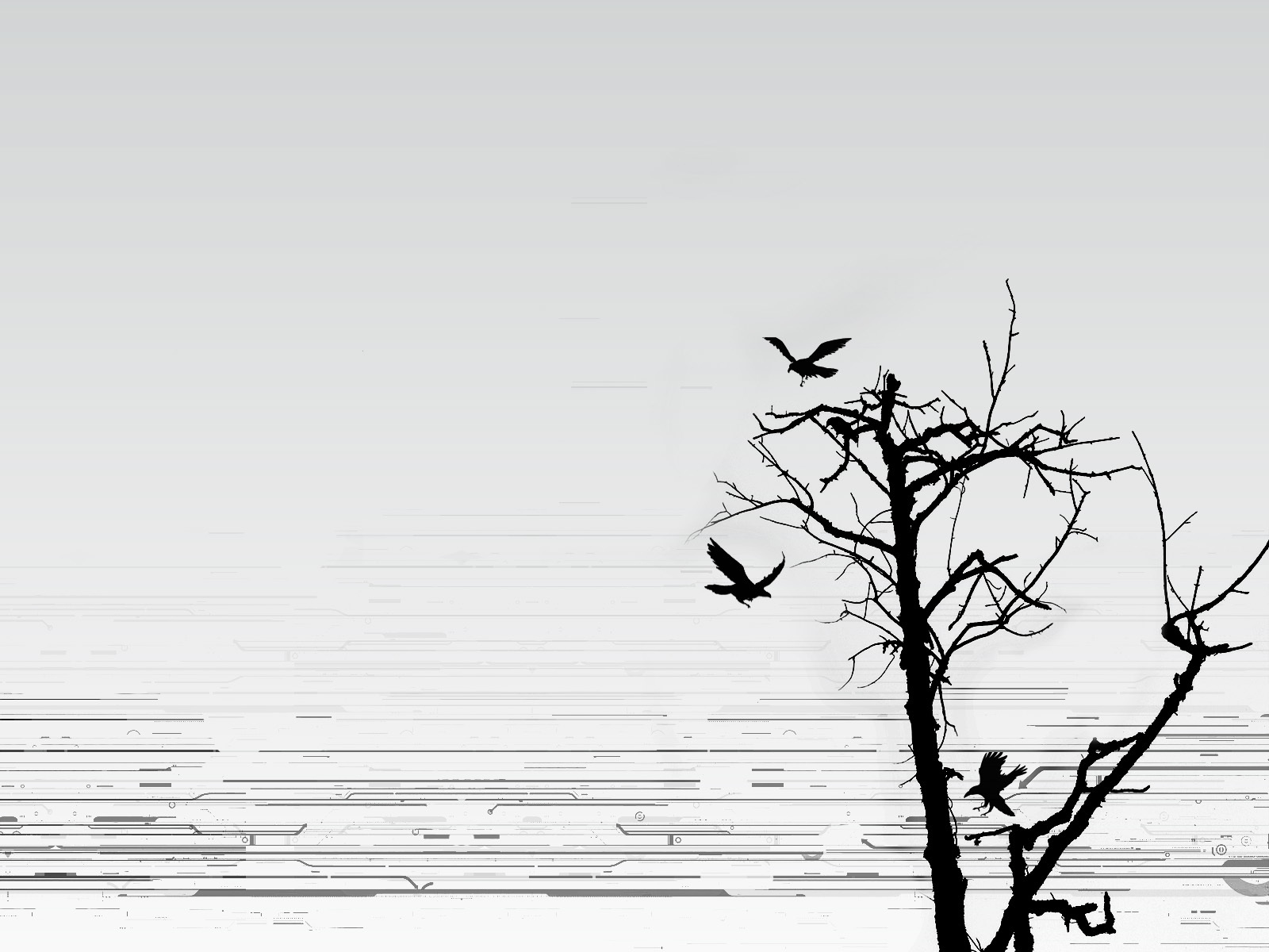 abstract Trees Birds silhouettes