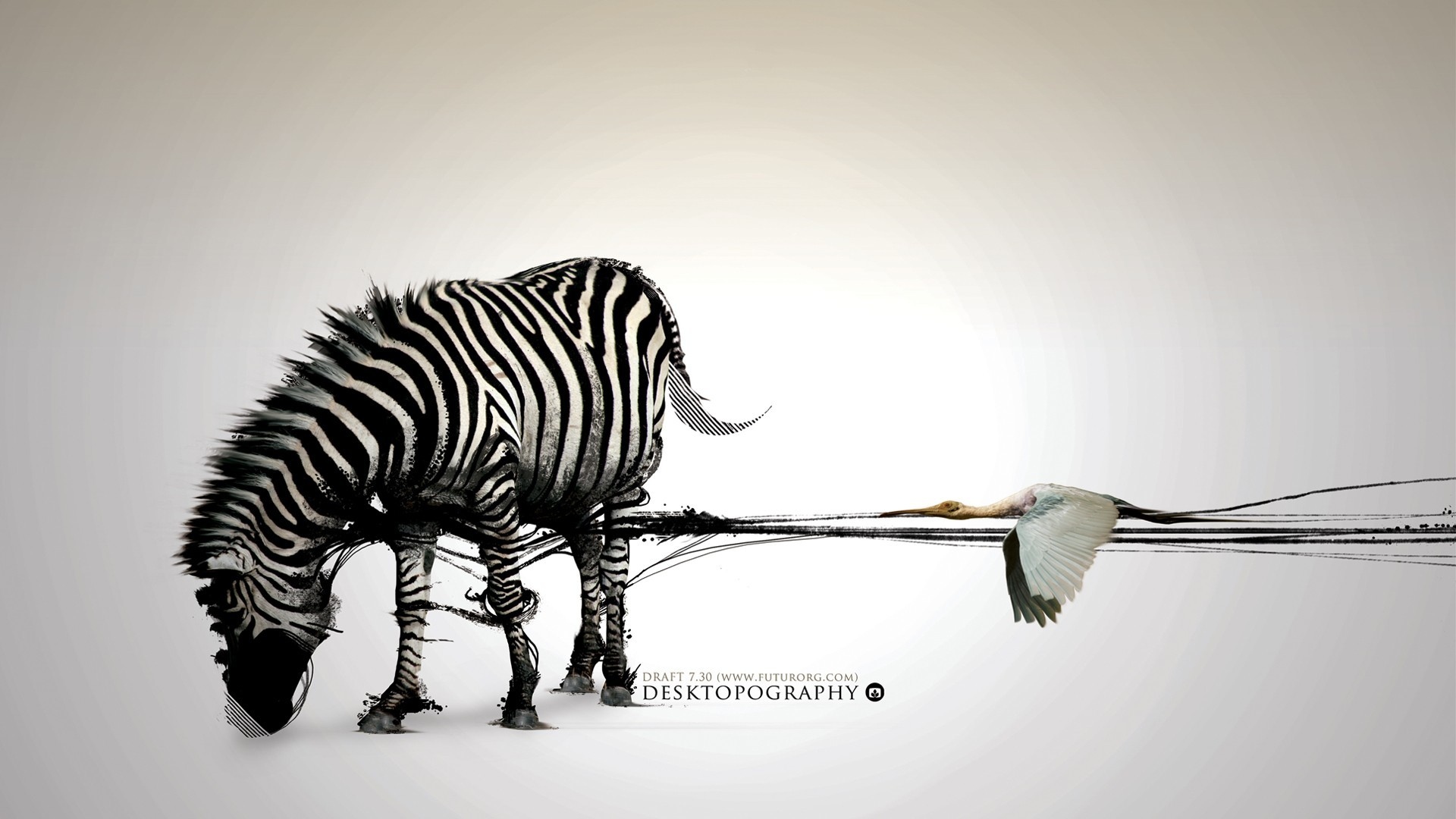 abstract zebras Desktopography HD Wallpaper