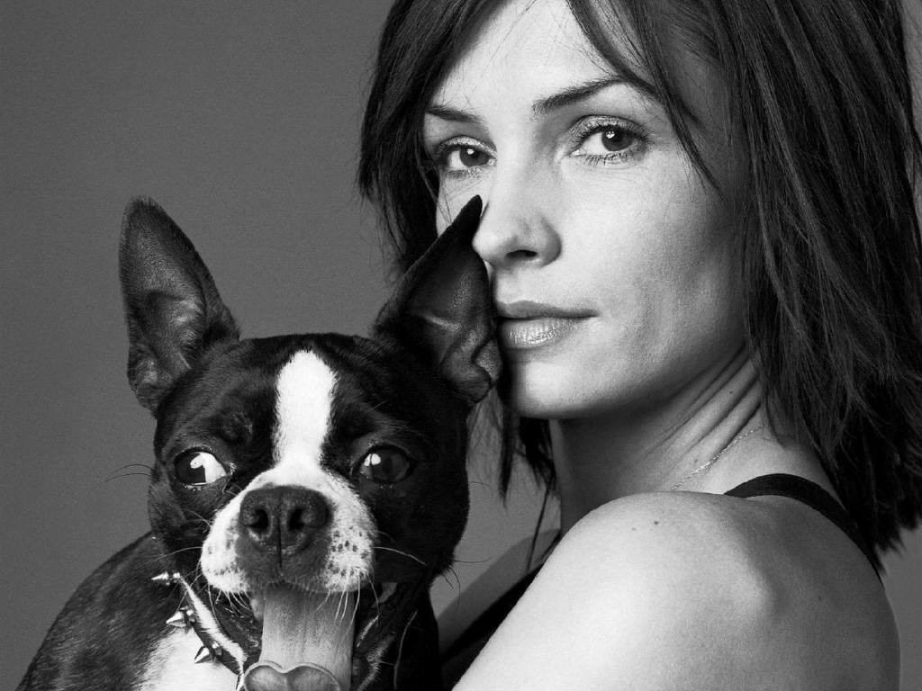 Actress Dogs Famke Janssen HD Wallpaper