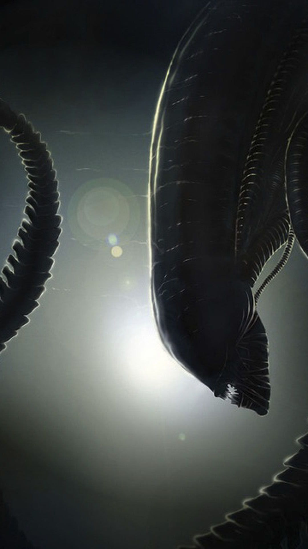 alien HD Wallpaper