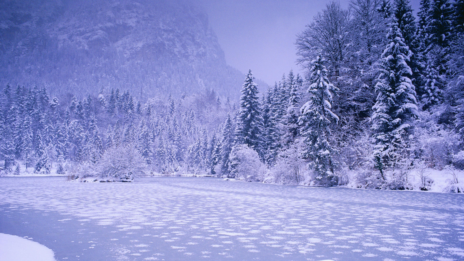 and snow hdtv nature HD Wallpaper
