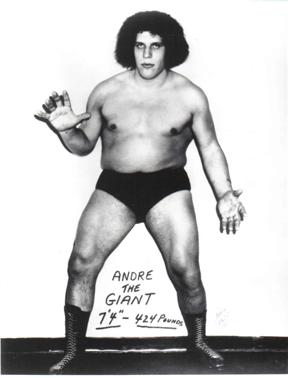 andre The giant HD Wallpaper