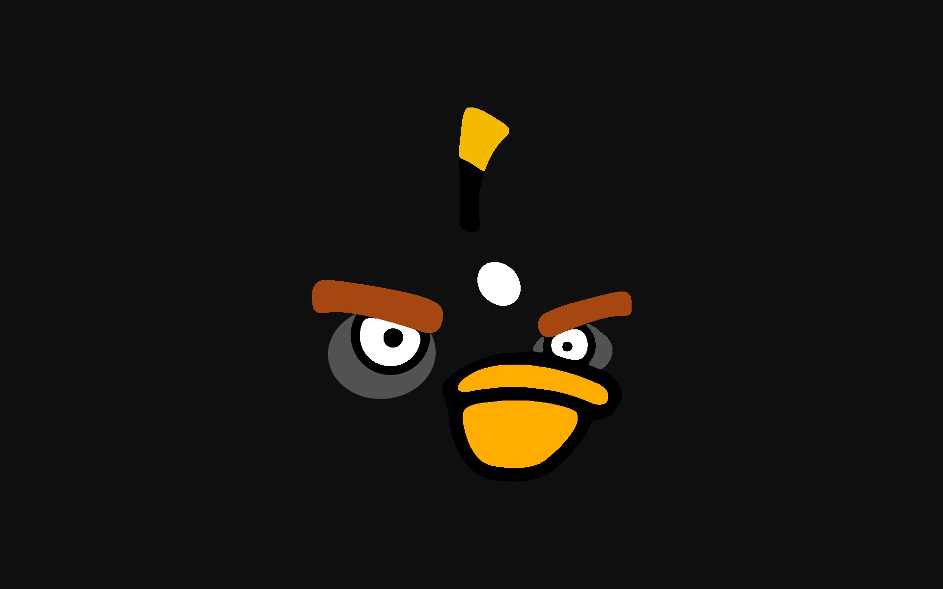angry birds Black Bird HD Wallpaper