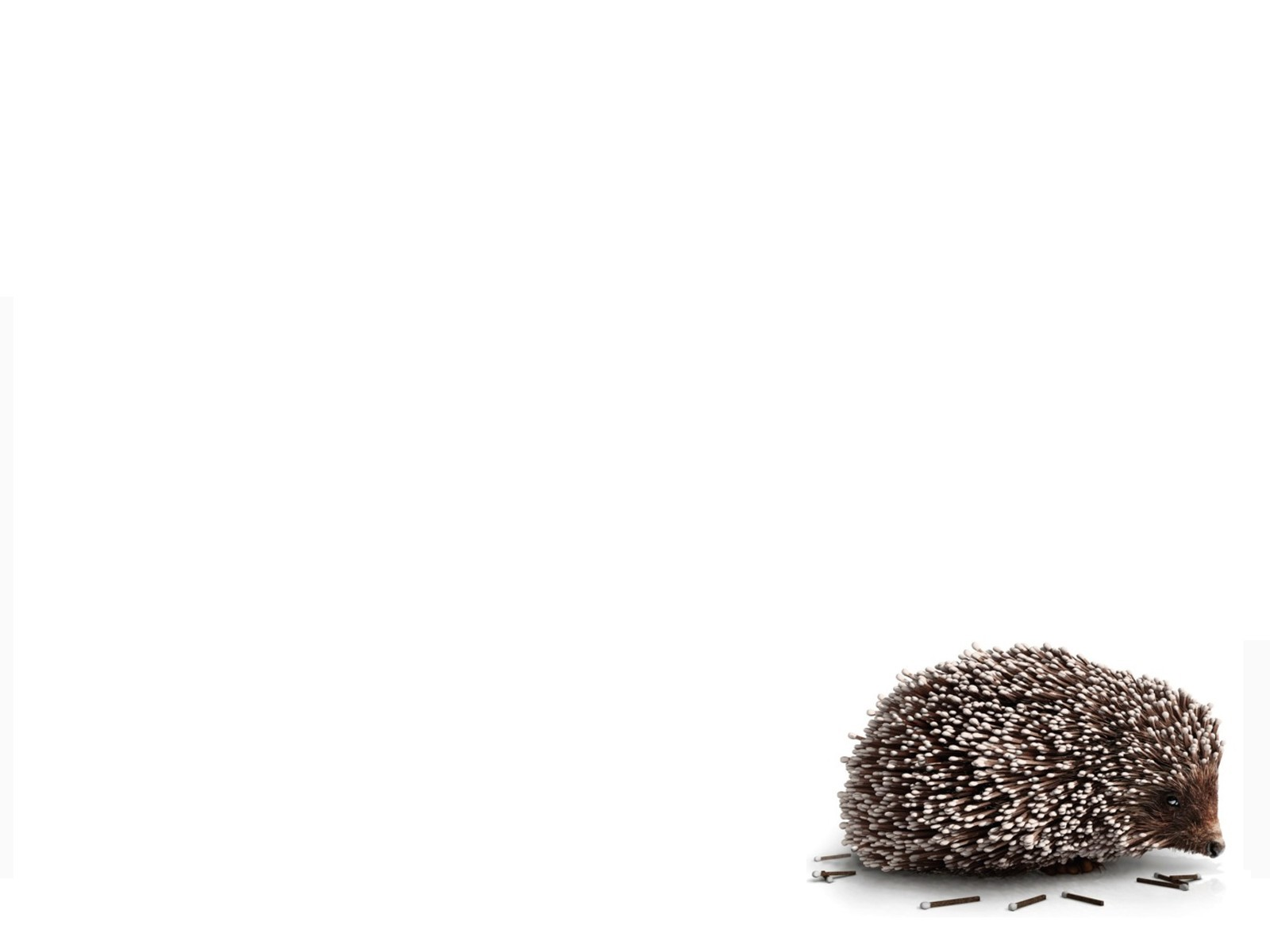 Animals hedgehogs artwork Simple HD Wallpaper