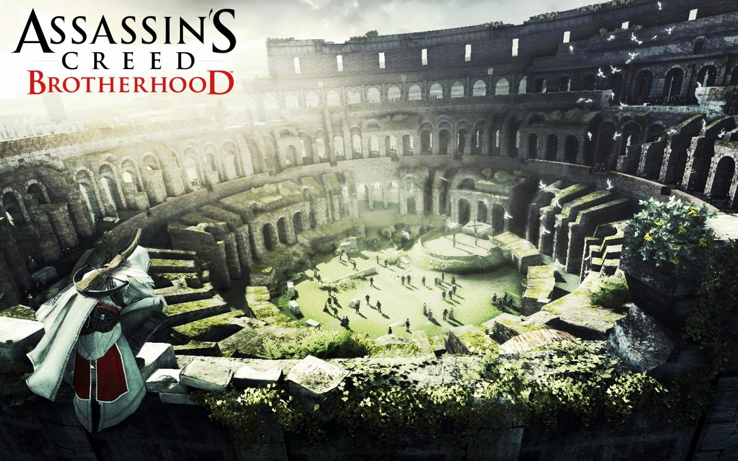 Assassin creed brotherhood Fuck HD Wallpaper
