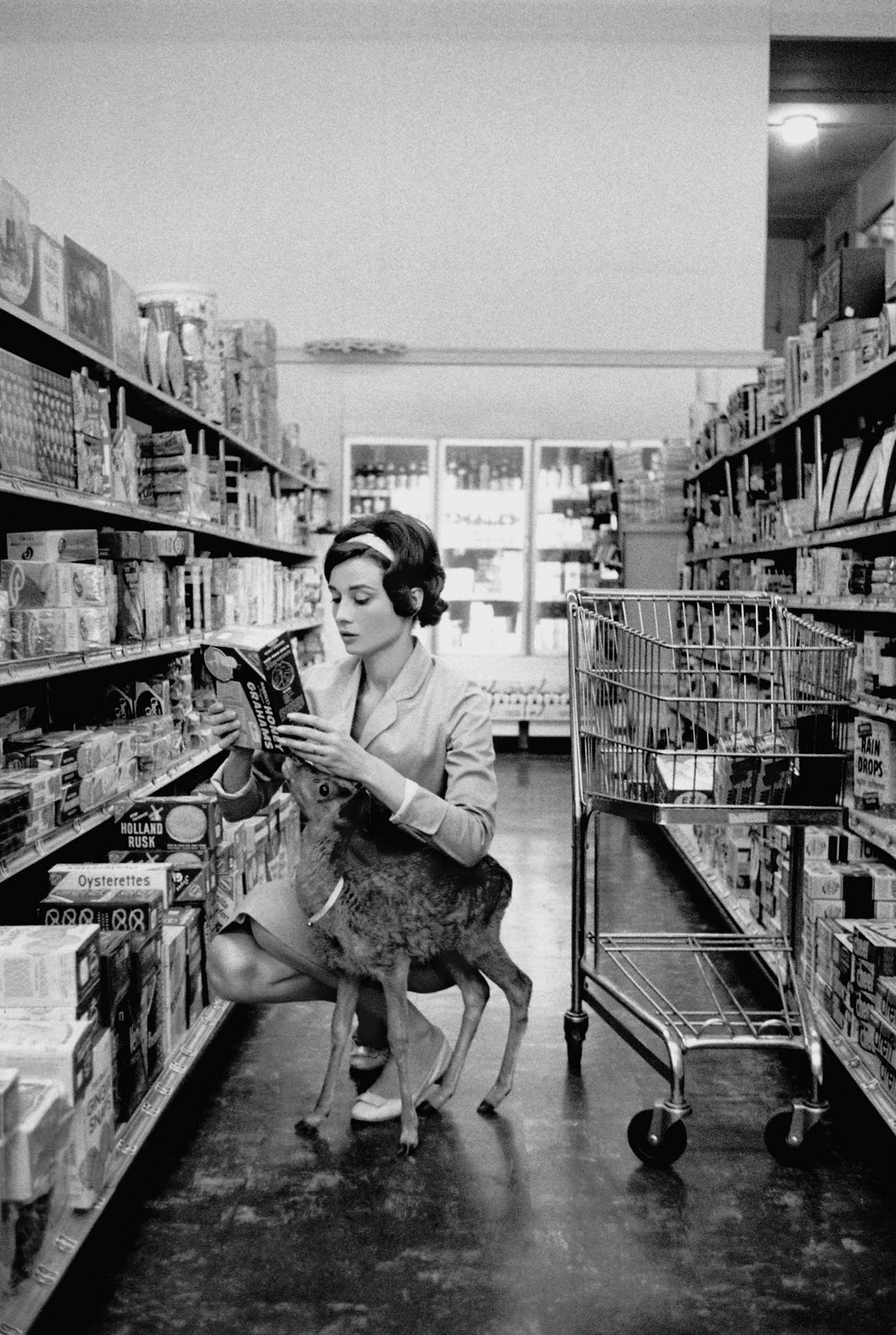 Audrey Hepburn deer monochrome HD Wallpaper