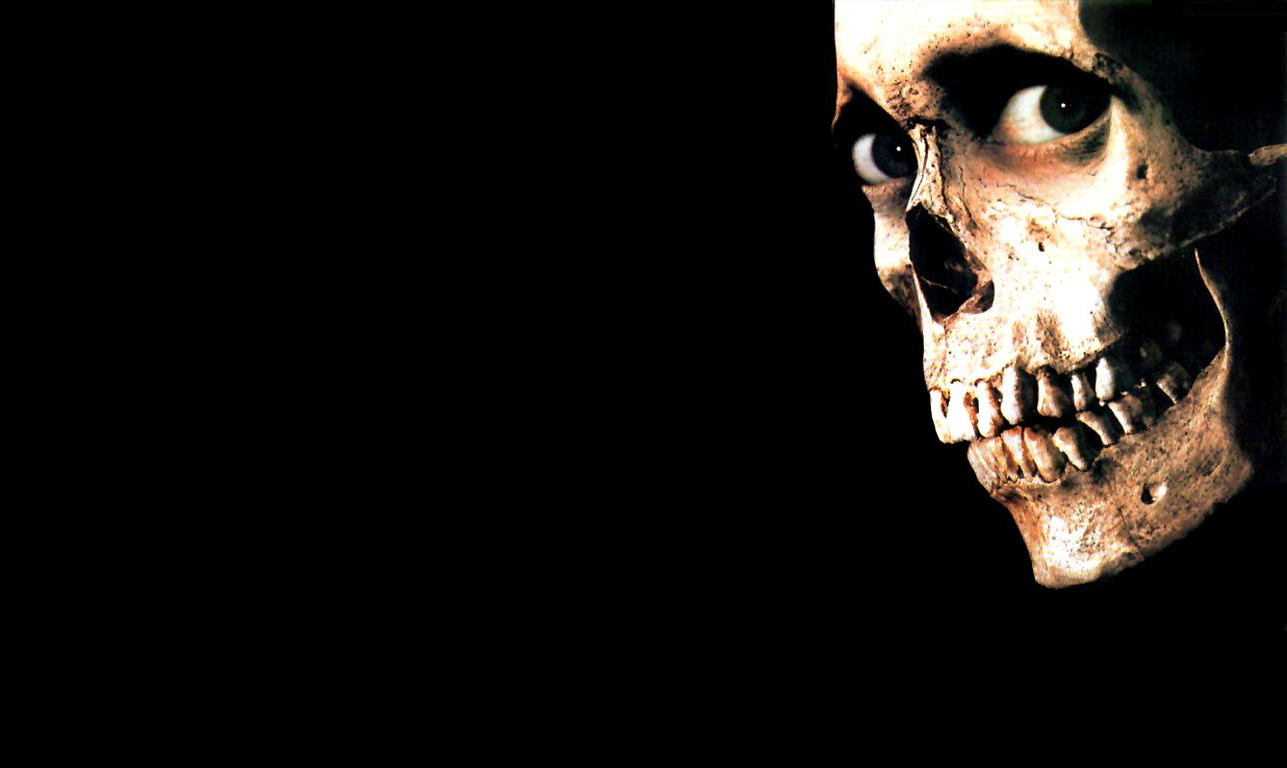 awesome red skull skeletons HD Wallpaper