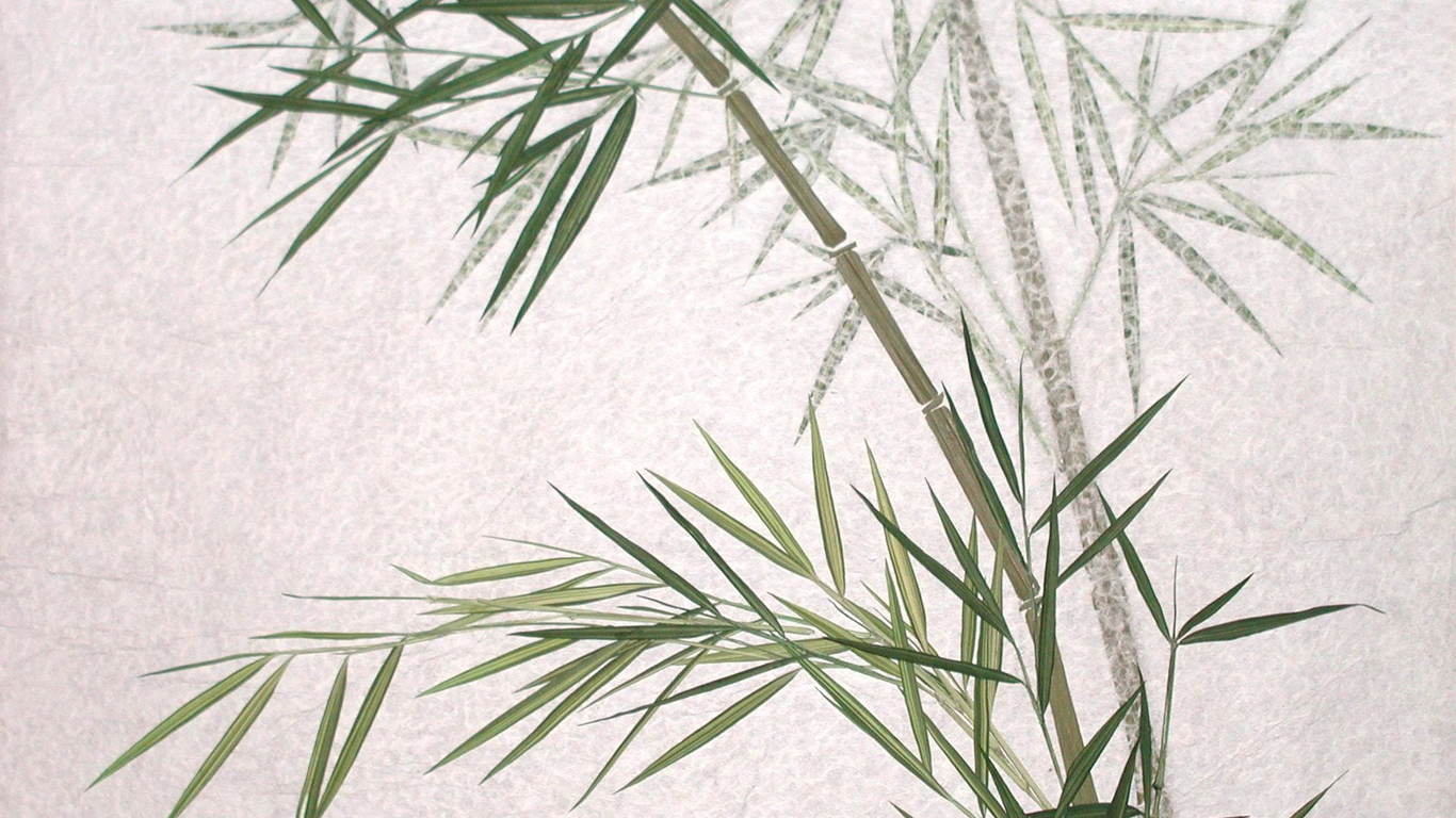 bamboo abstract artwork HD Wallpaper