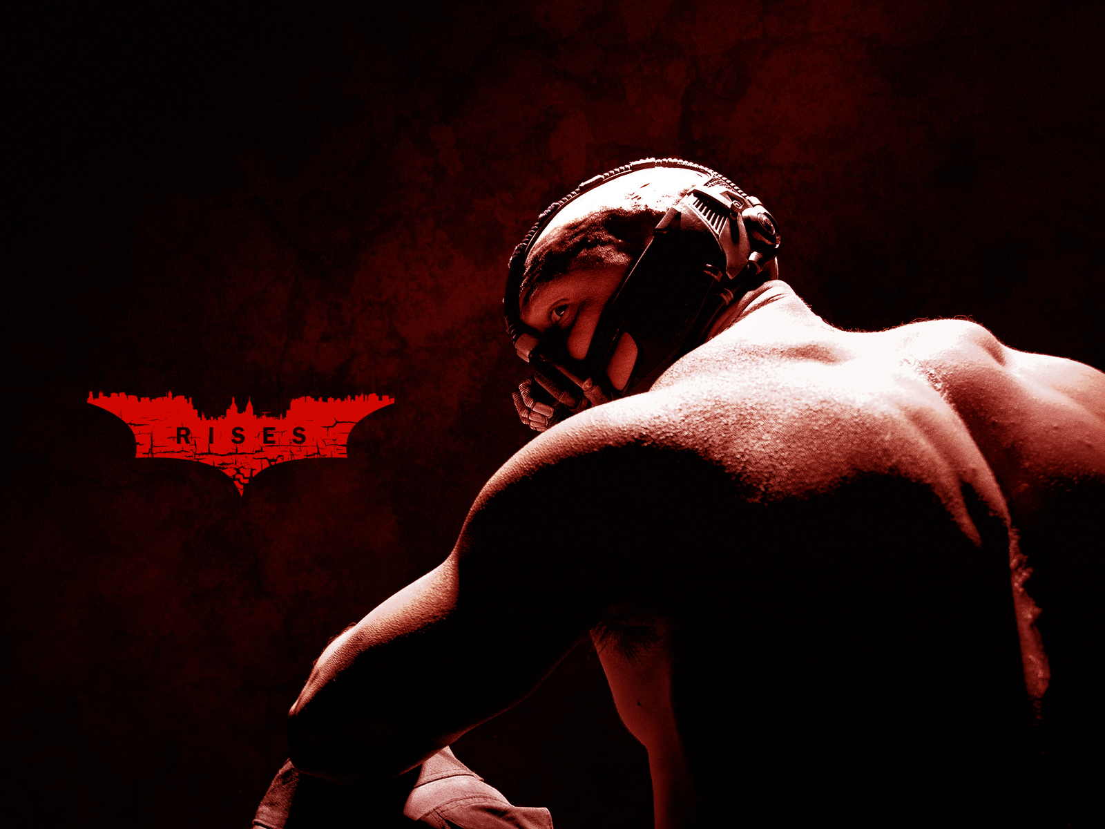 Batman Bane Batman The HD Wallpaper