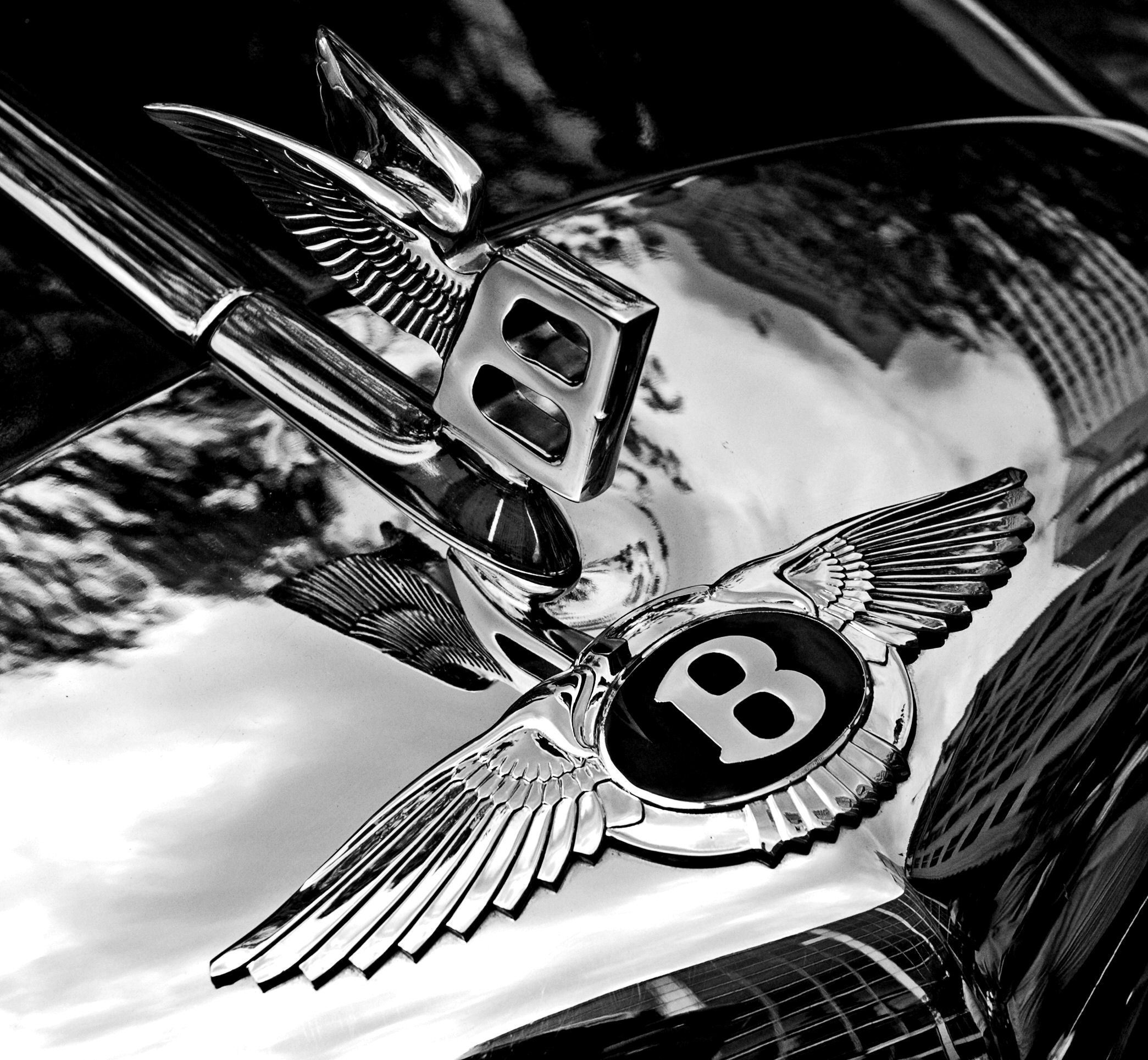 Bentley badge and hood HD Wallpaper