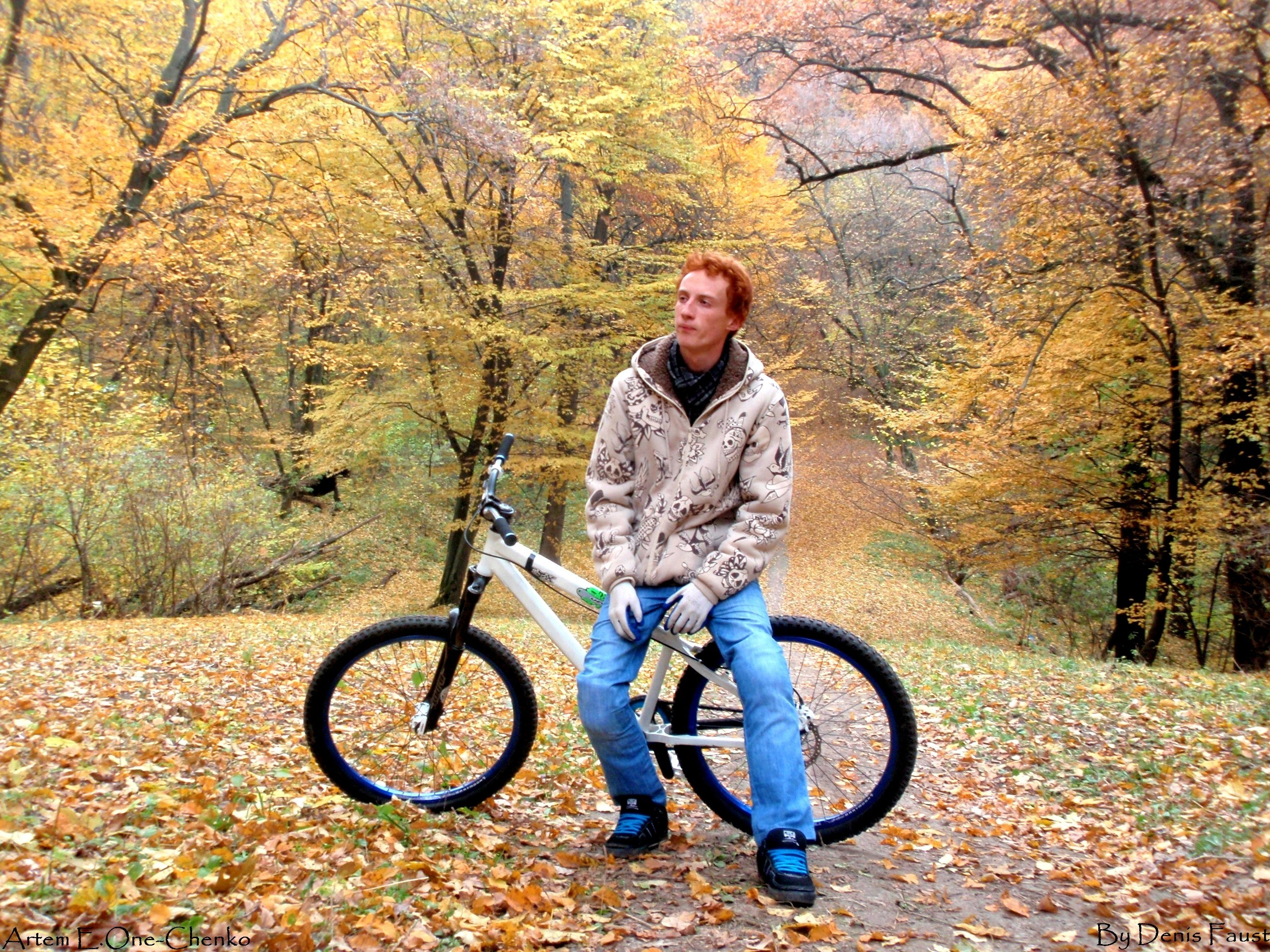 bike autumn forests Ukraine HD Wallpaper