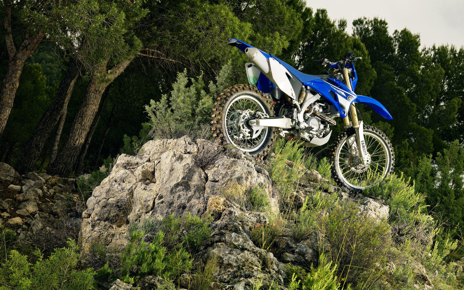 bike motocross HD Wallpaper