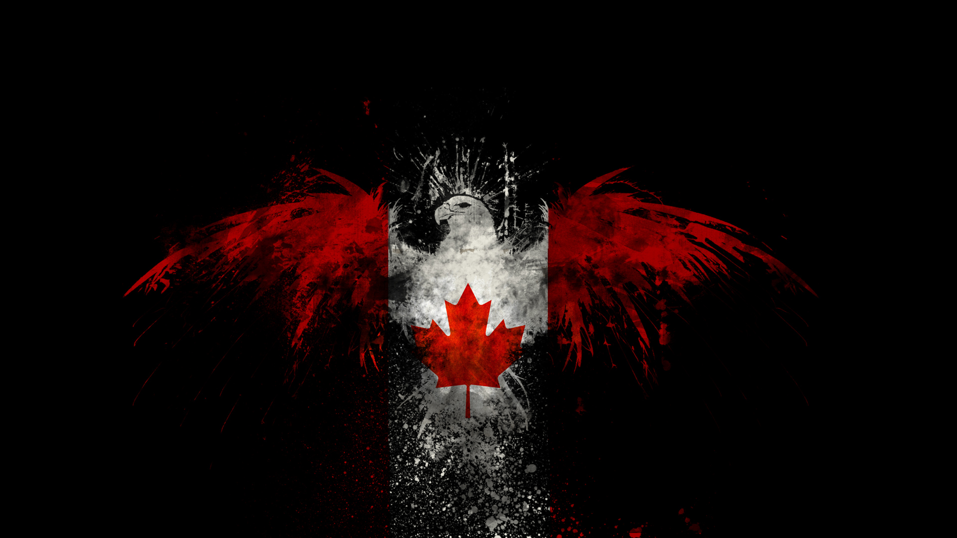 Birds Canada Canadian flag HD Wallpaper