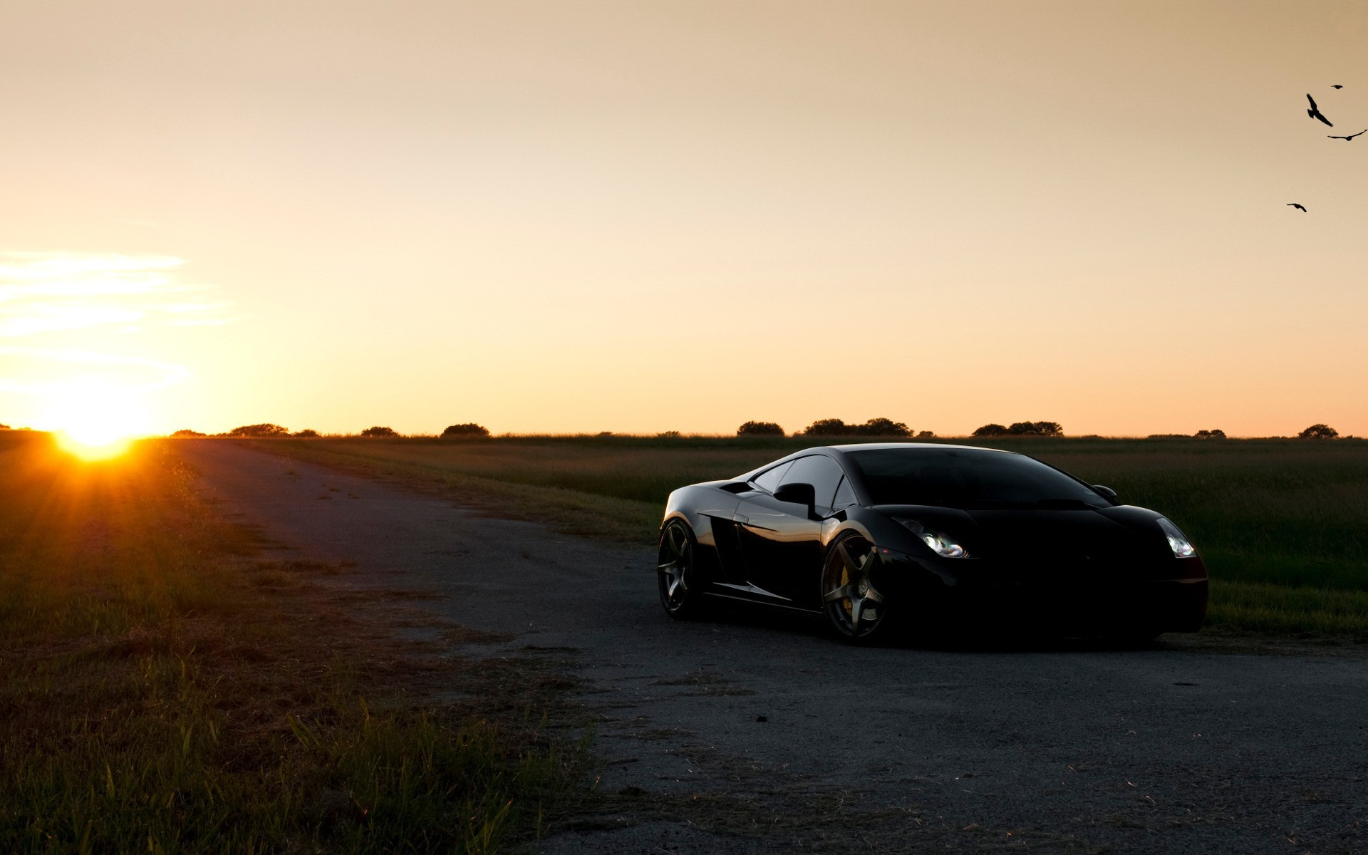 black cars Lamborghini lamborghini HD Wallpaper