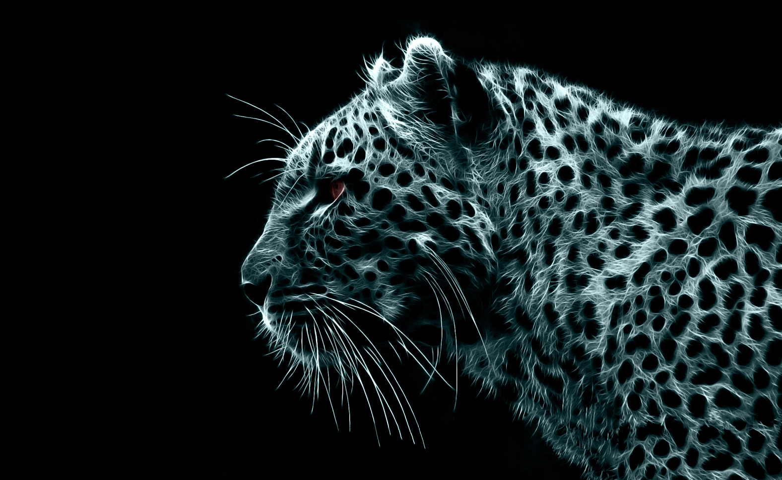 black white digital Leopards HD Wallpaper