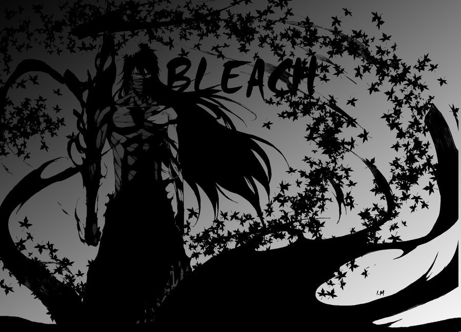 bleach kurosaki ichigo Final HD Wallpaper