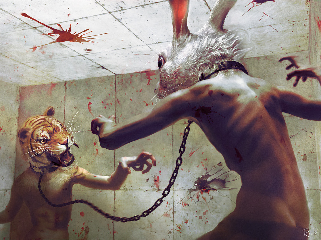 blood Tigers room fight HD Wallpaper