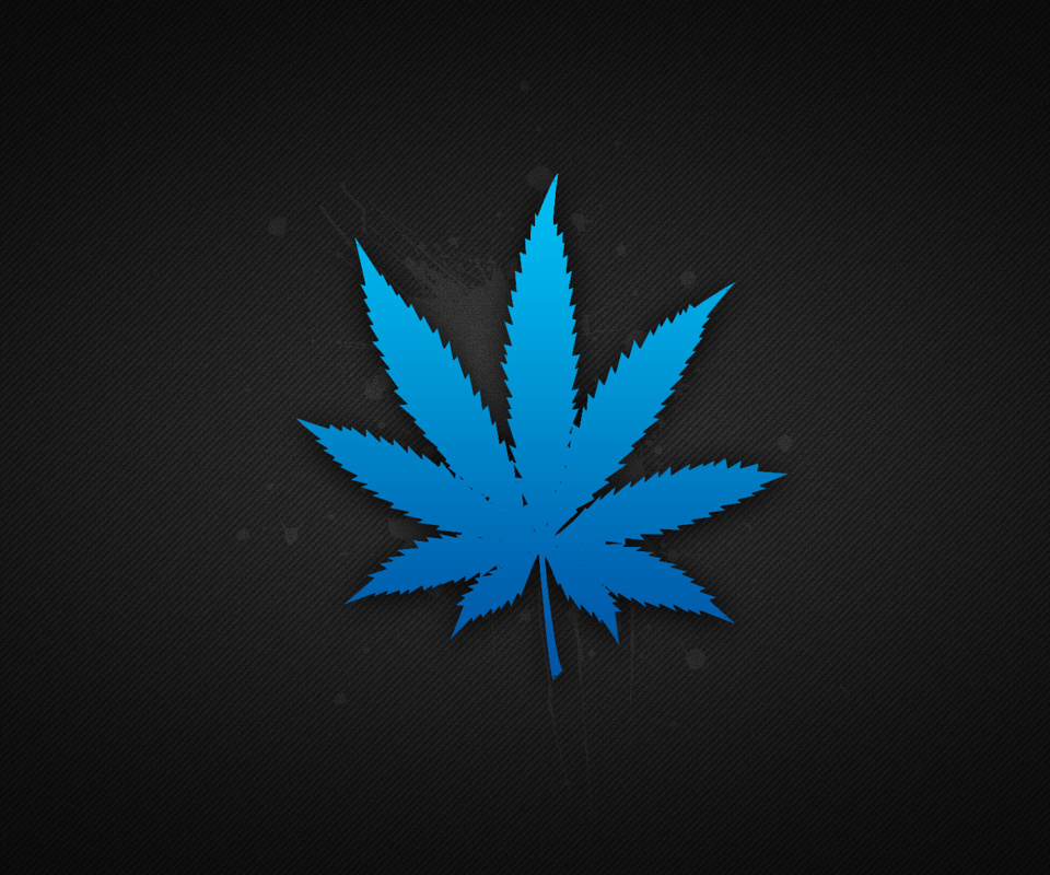 blue drugs leaves marijuana HD Wallpaper