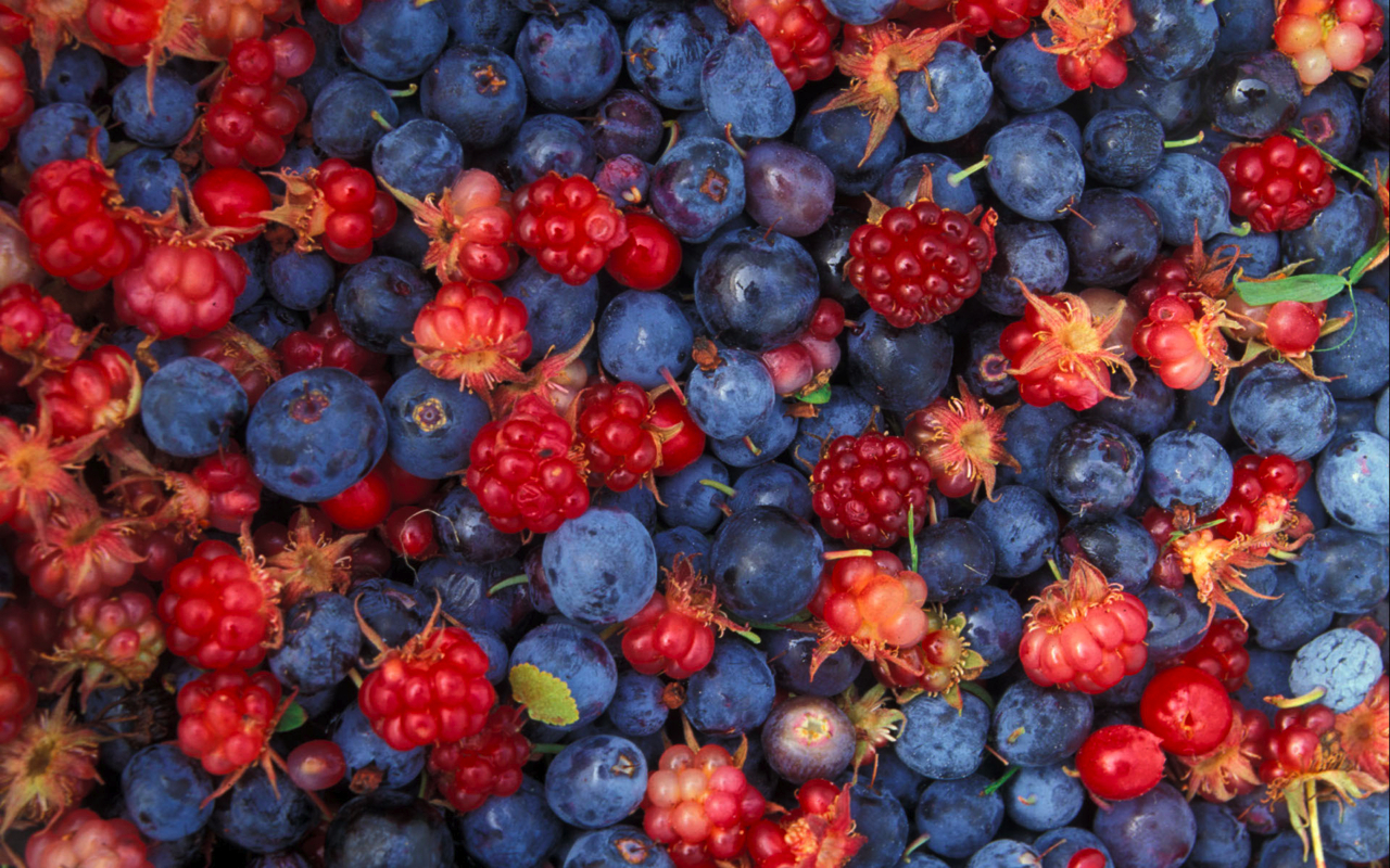 blue red fruits food HD Wallpaper
