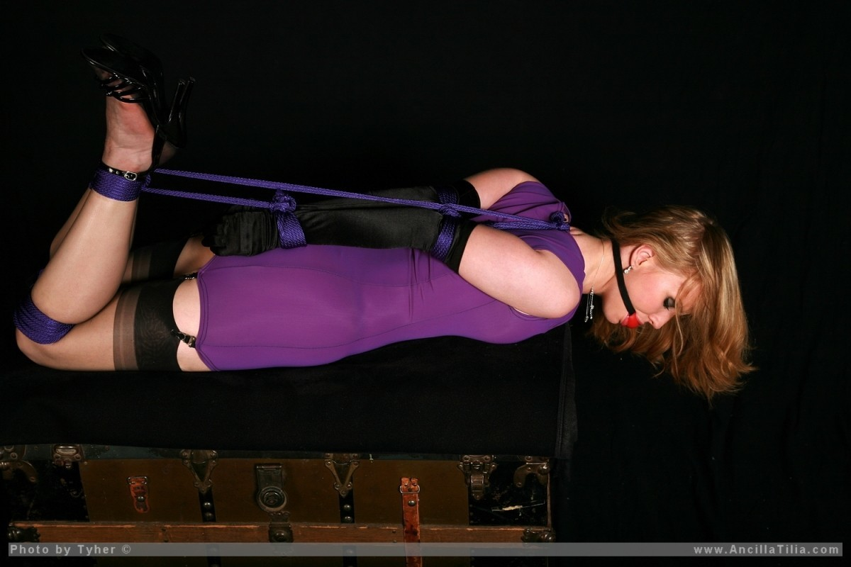 bondage purple ancilla tilia HD Wallpaper