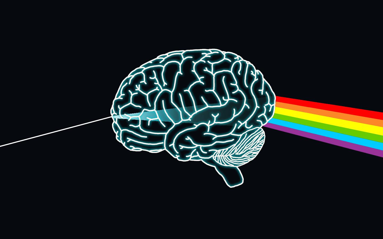 Pink Floyd Brain