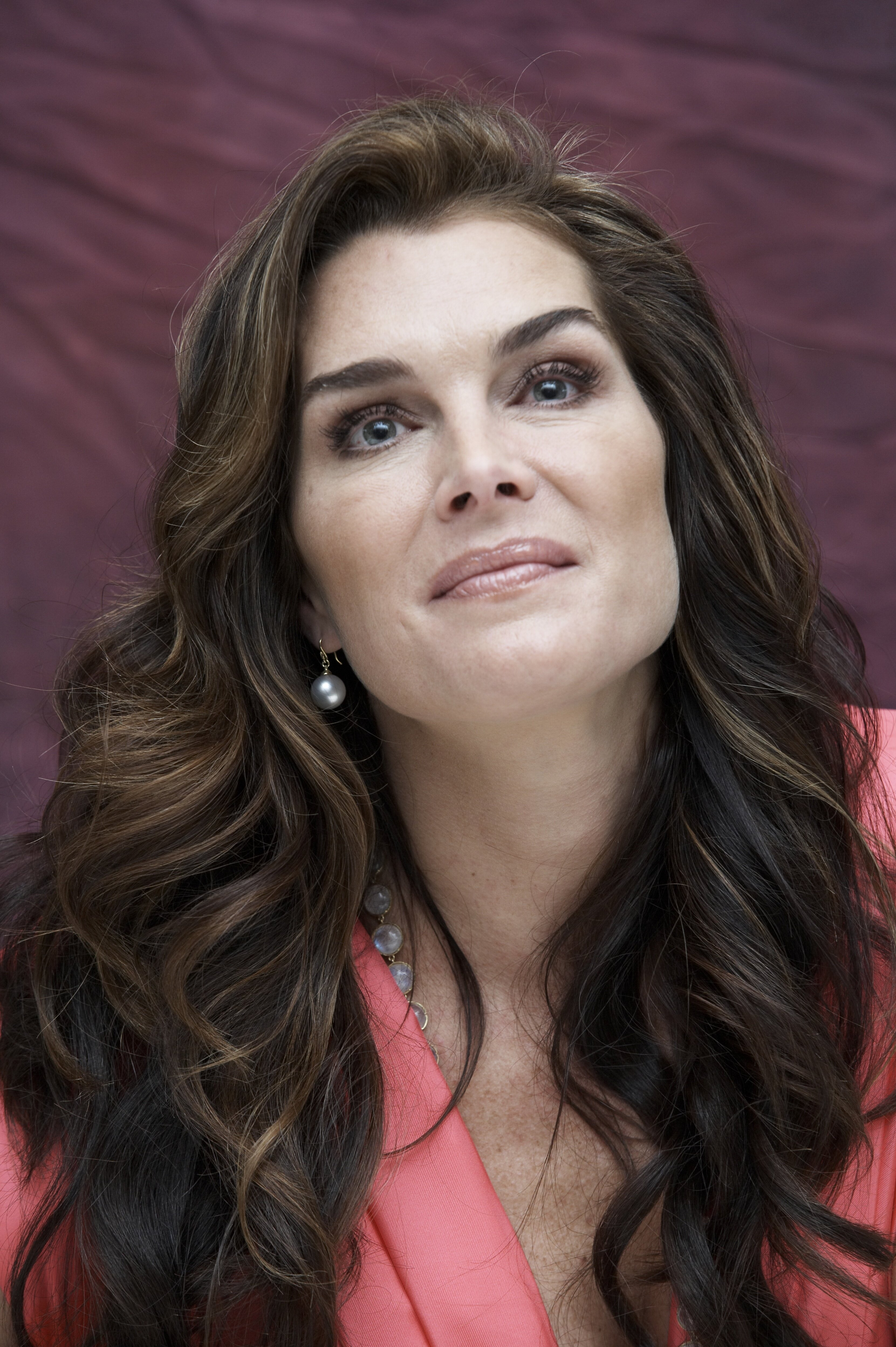 brooke shields girl brunettes