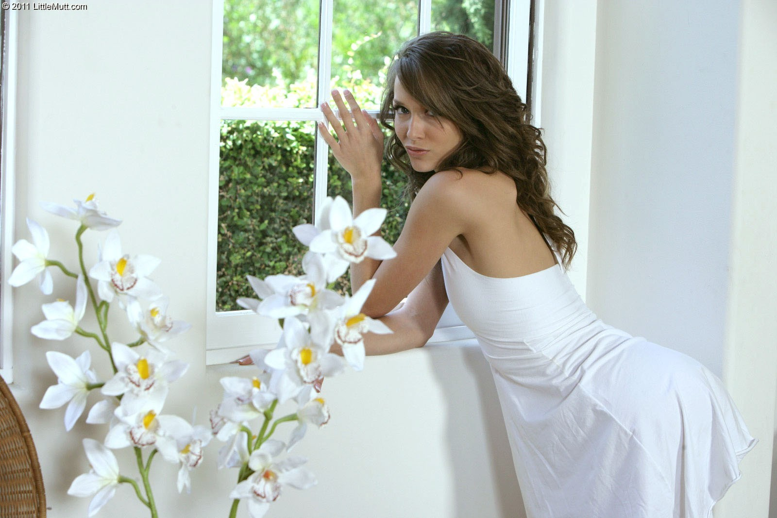 brunettes woman models window HD Wallpaper