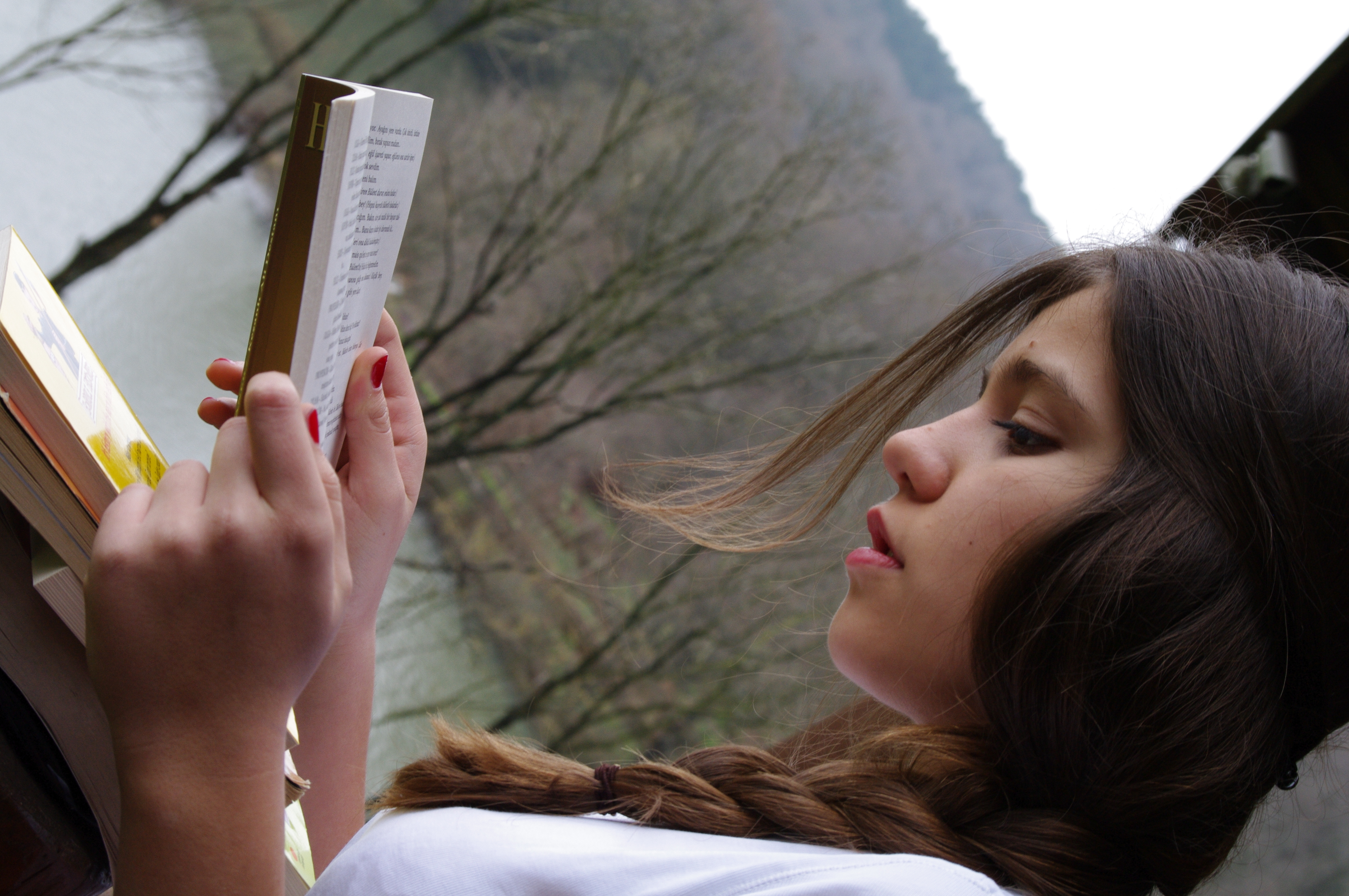 brunettes woman reading Books HD Wallpaper