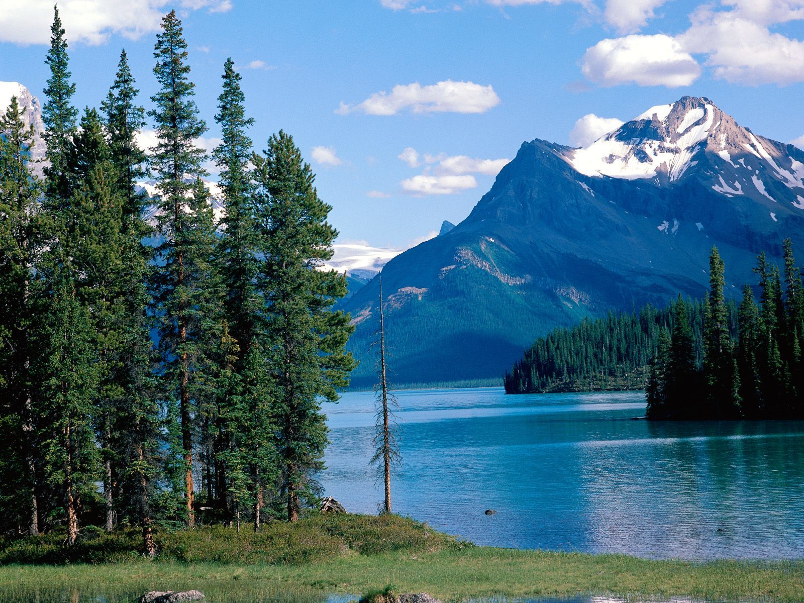 Canada alberta national park HD Wallpaper