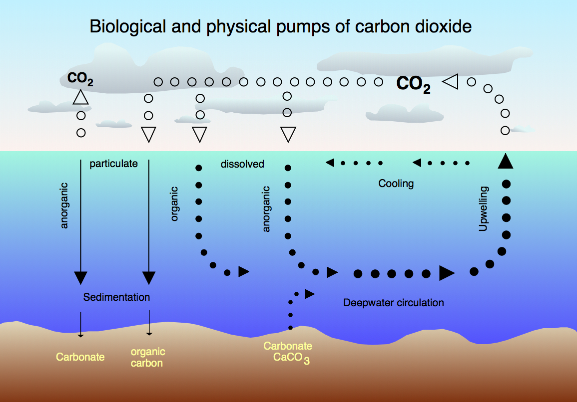 Carbon dioxide Science charts HD Wallpaper