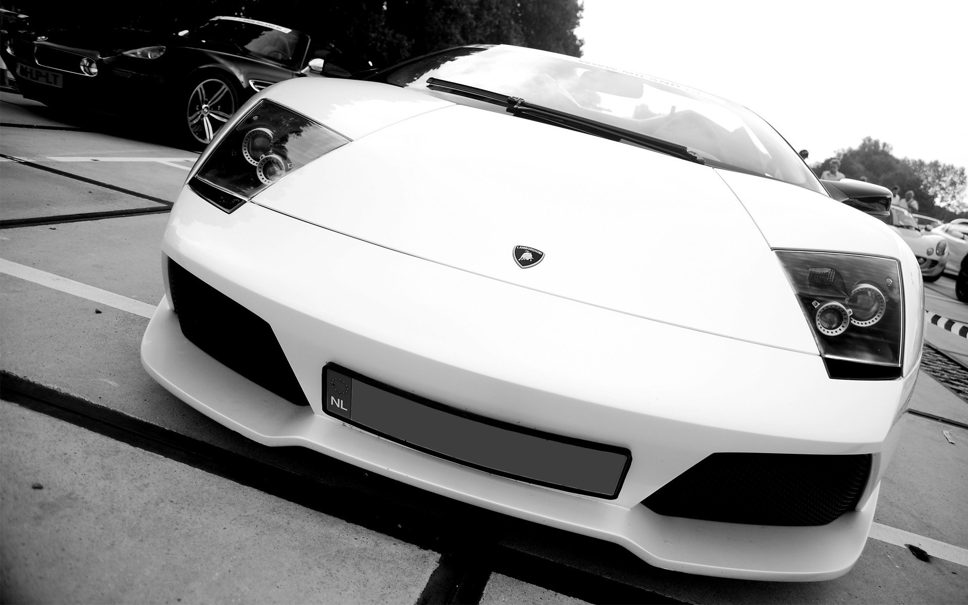 cars Lamborghini monochrome lamborghini HD Wallpaper