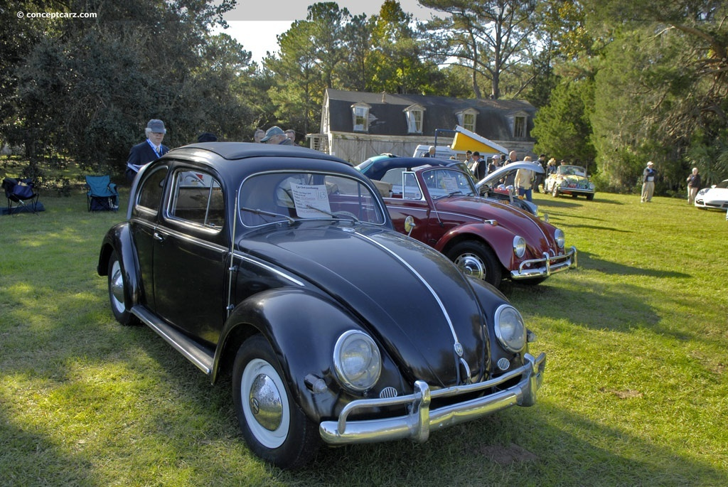 cars Volkswagen beetle insect HD Wallpaper