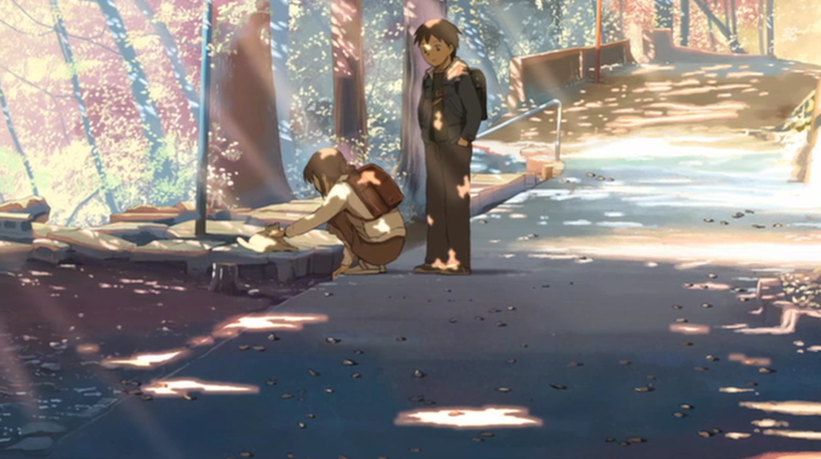 cats makoto shinkai centimeters HD Wallpaper