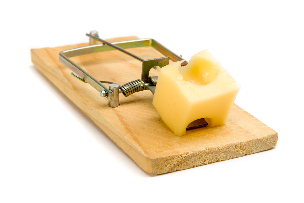 cheese Objects mouse trap HD Wallpaper