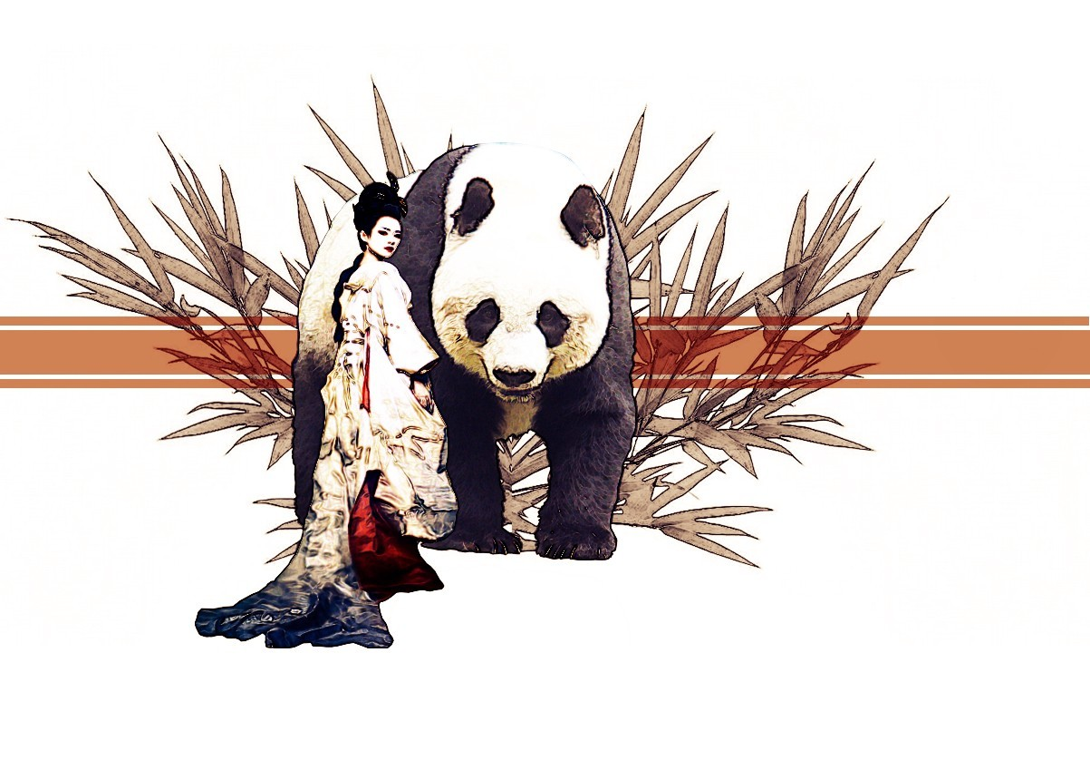 China geisha panda bears HD Wallpaper