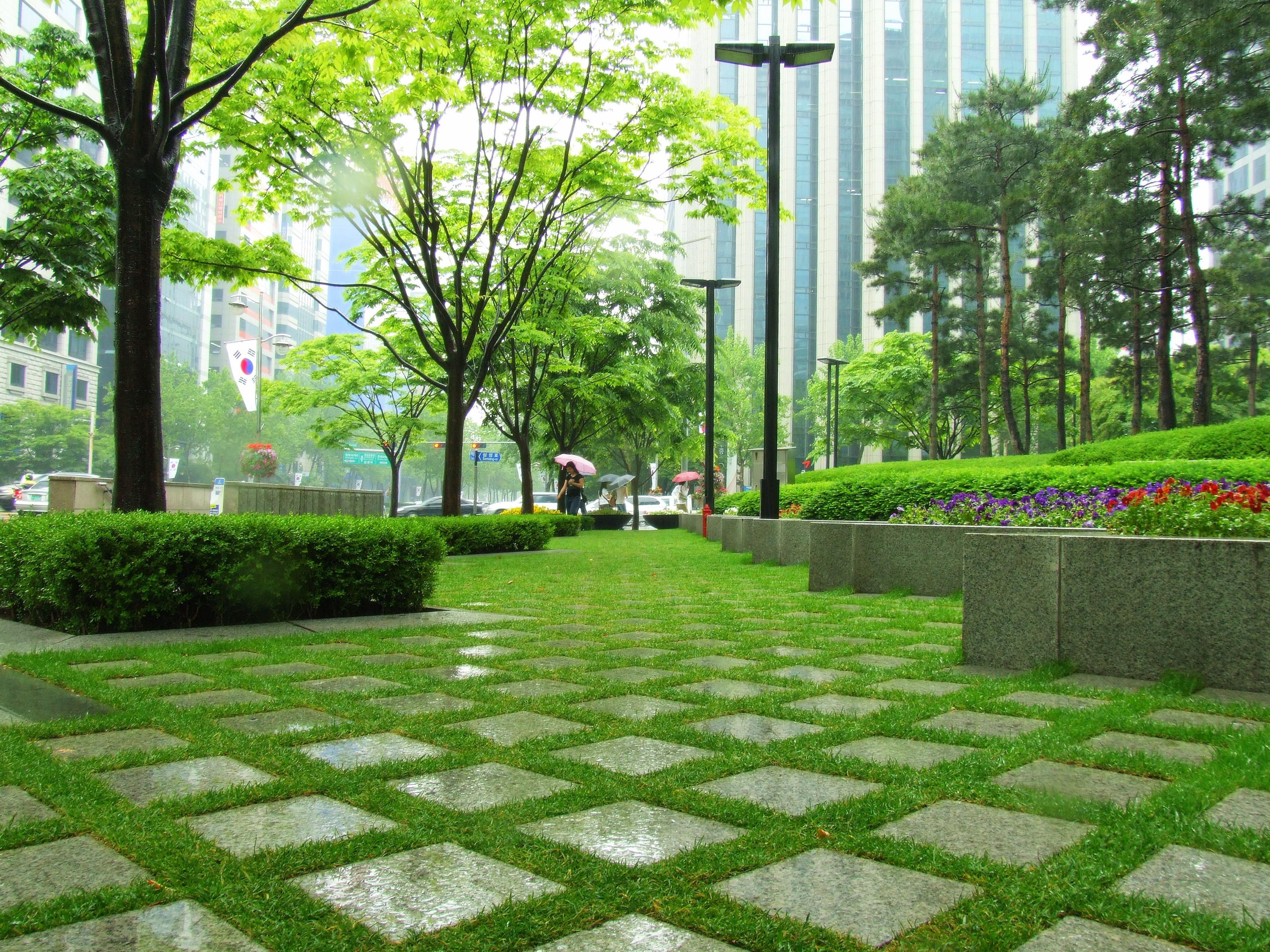 cityscapes grass Seoul Parks HD Wallpaper