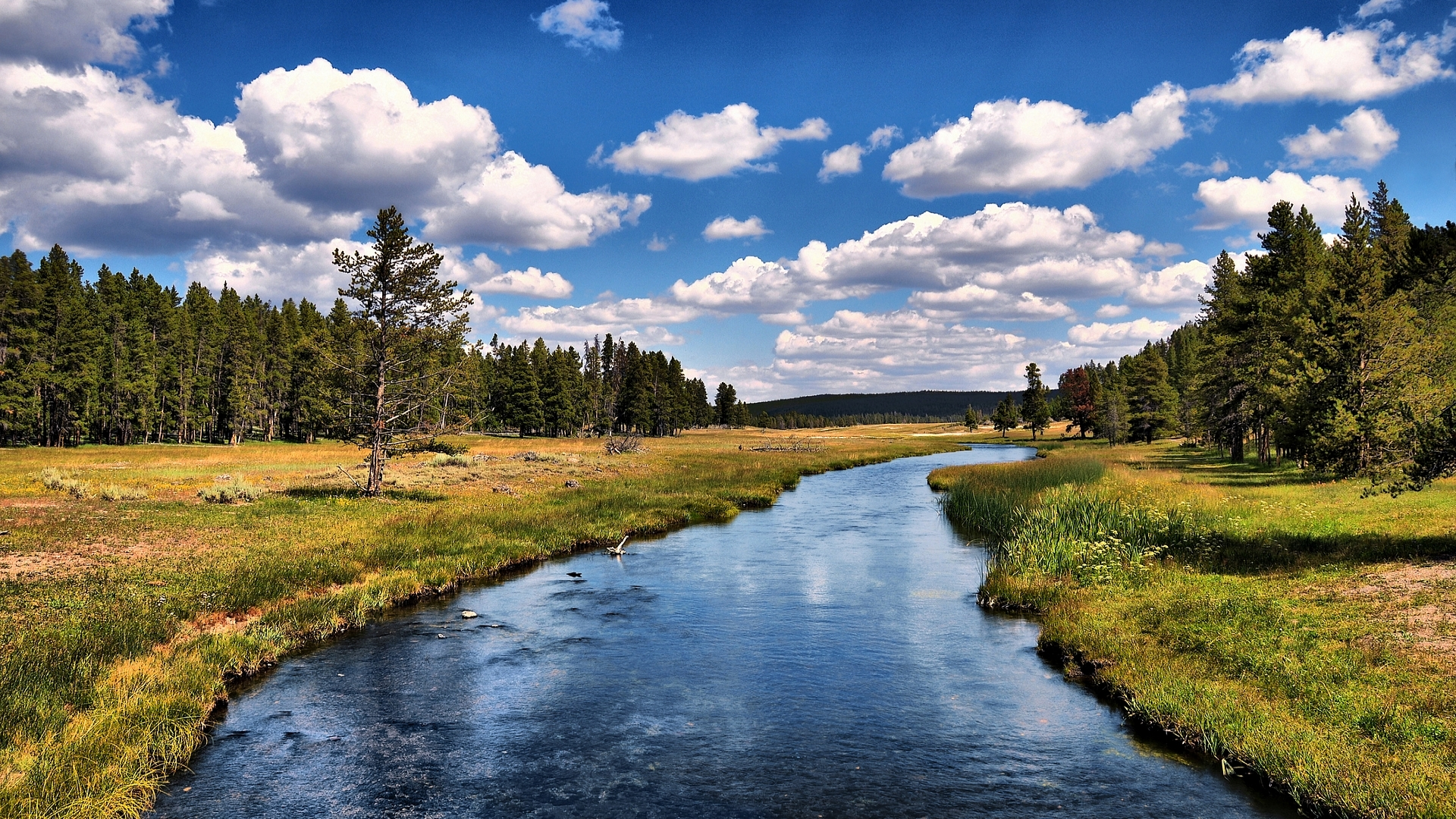 clouds forest rivers nature HD Wallpaper
