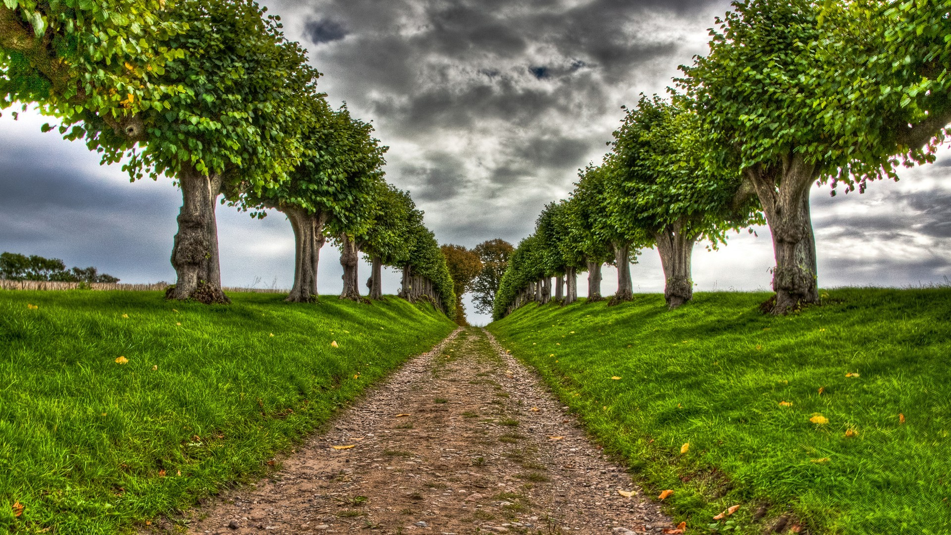 clouds Landscapes Trees paths HD Wallpaper