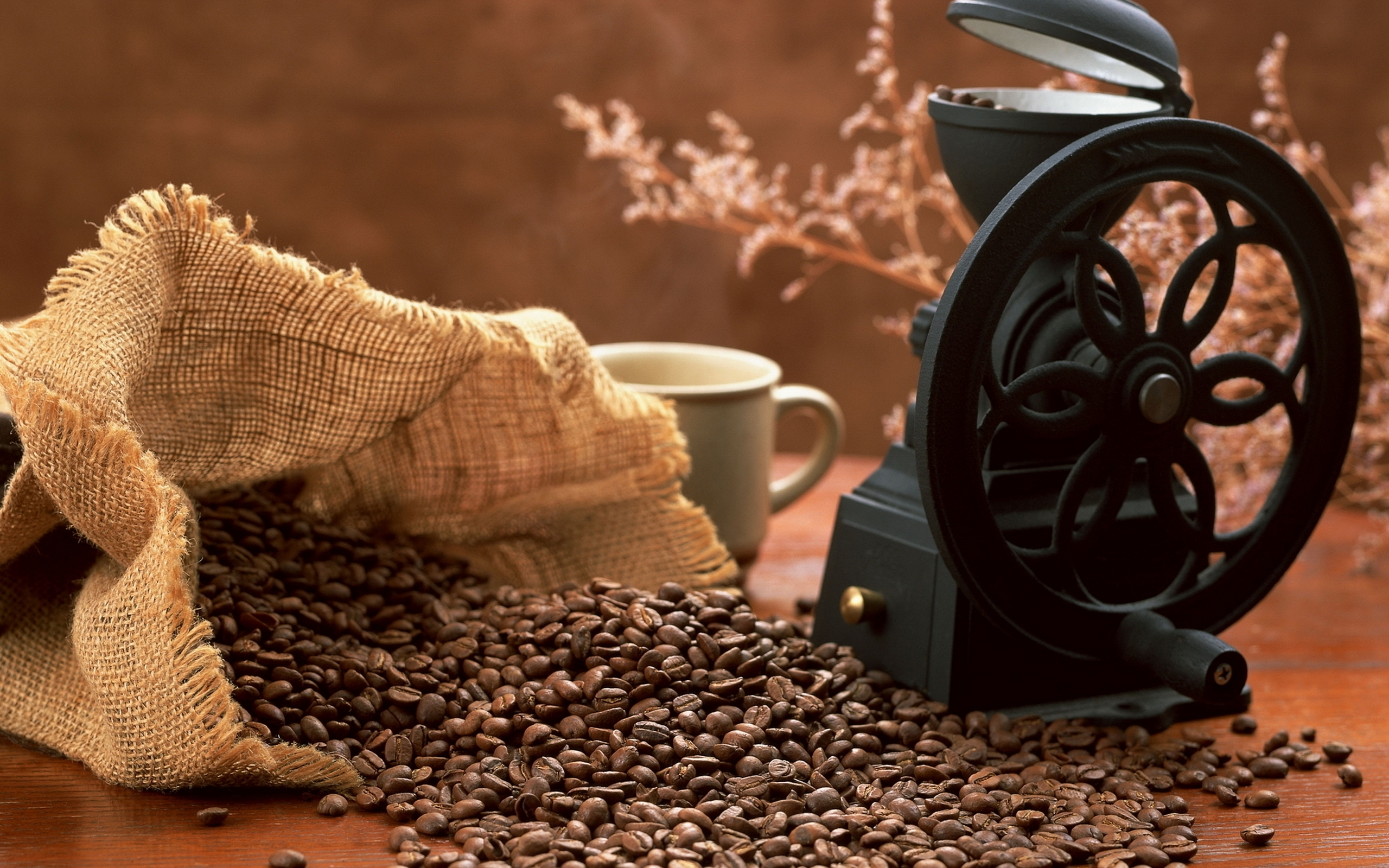 Coffee Beans coffee cups HD Wallpaper