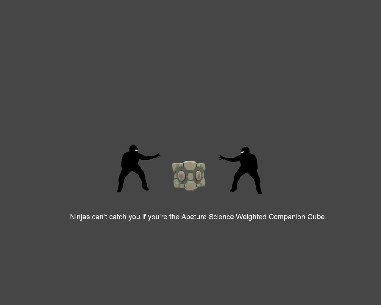 Companion Cube ninjas cant HD Wallpaper