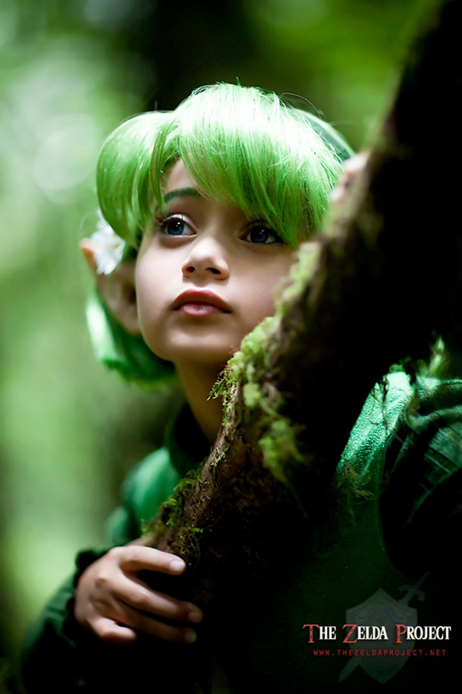 cosplay the legend of HD Wallpaper