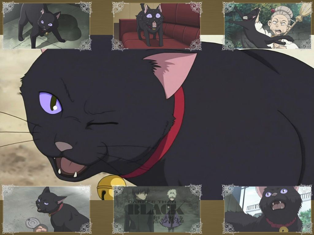 darker than black Mao HD Wallpaper