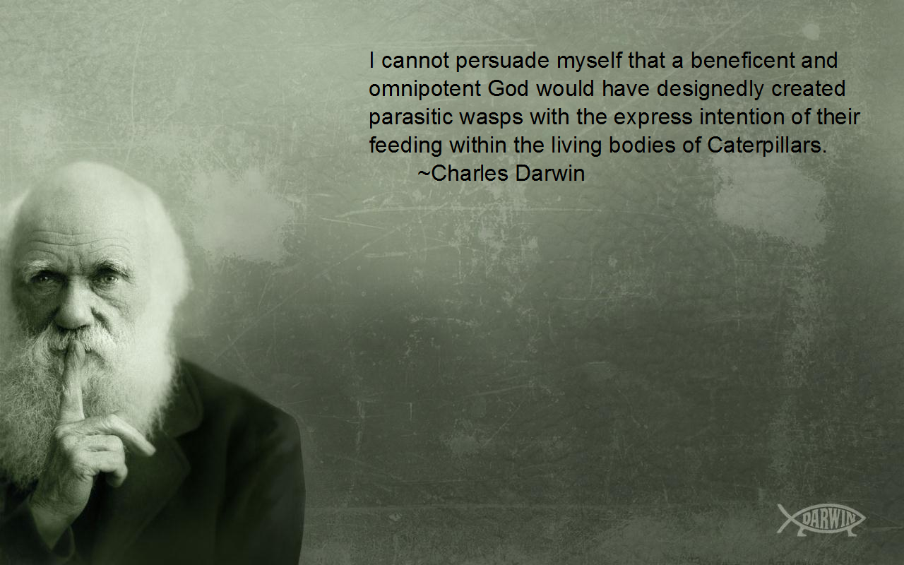 darwin quote think most HD Wallpaper