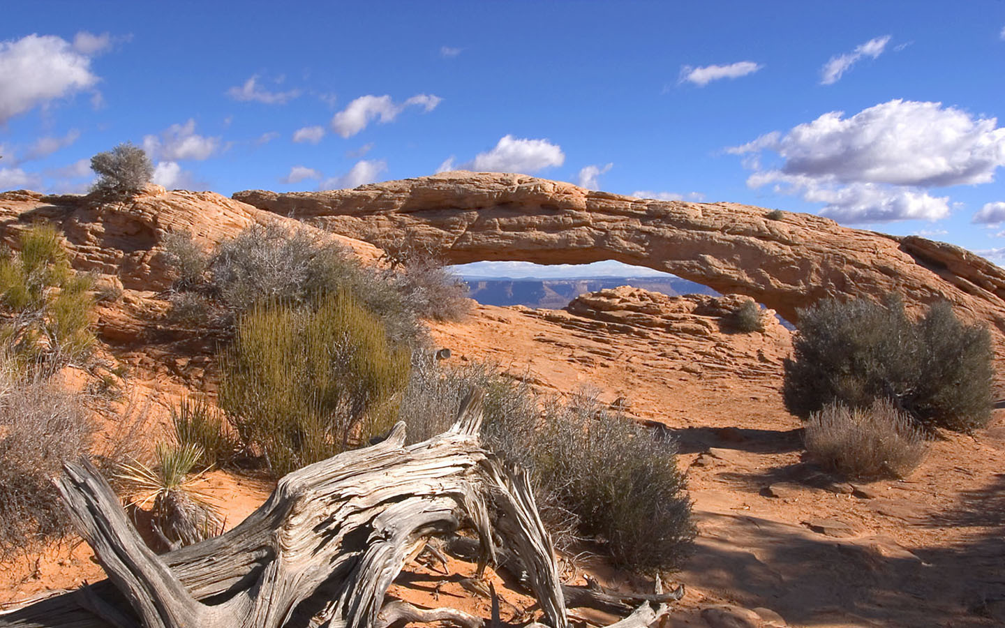 deserts Utah national park HD Wallpaper