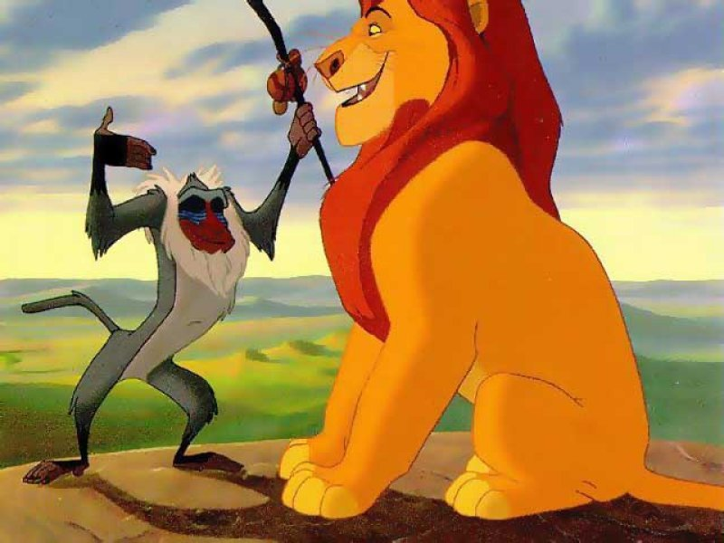 Disney Company The Lion HD Wallpaper