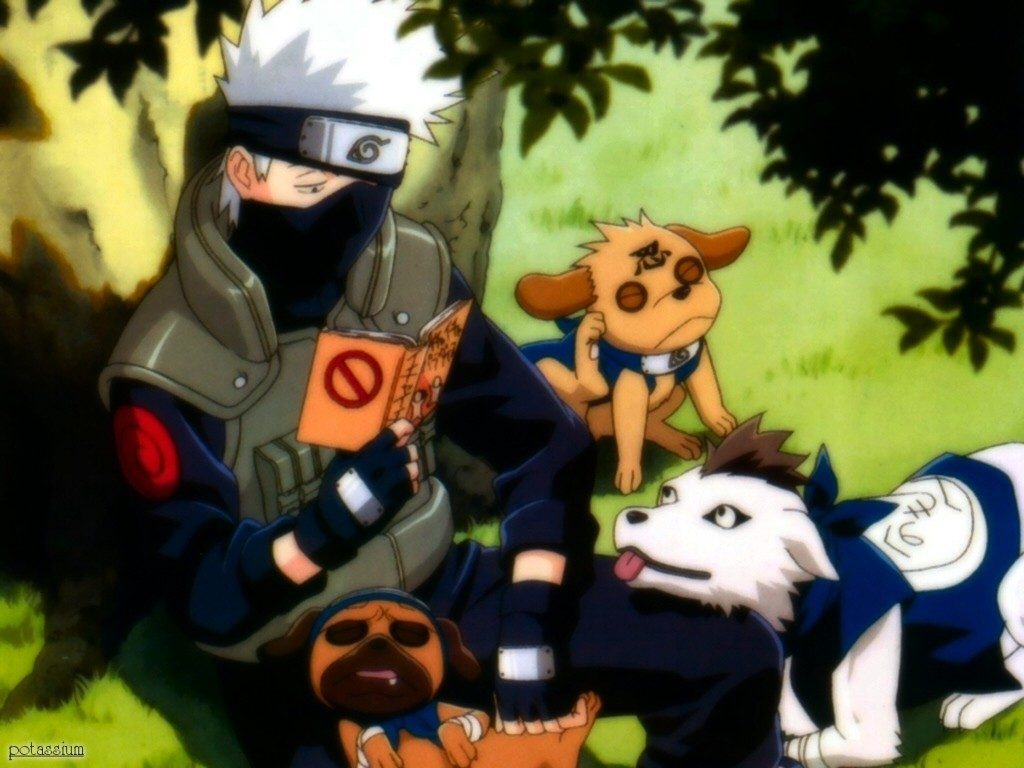 Dogs reading naruto shippuden HD Wallpaper