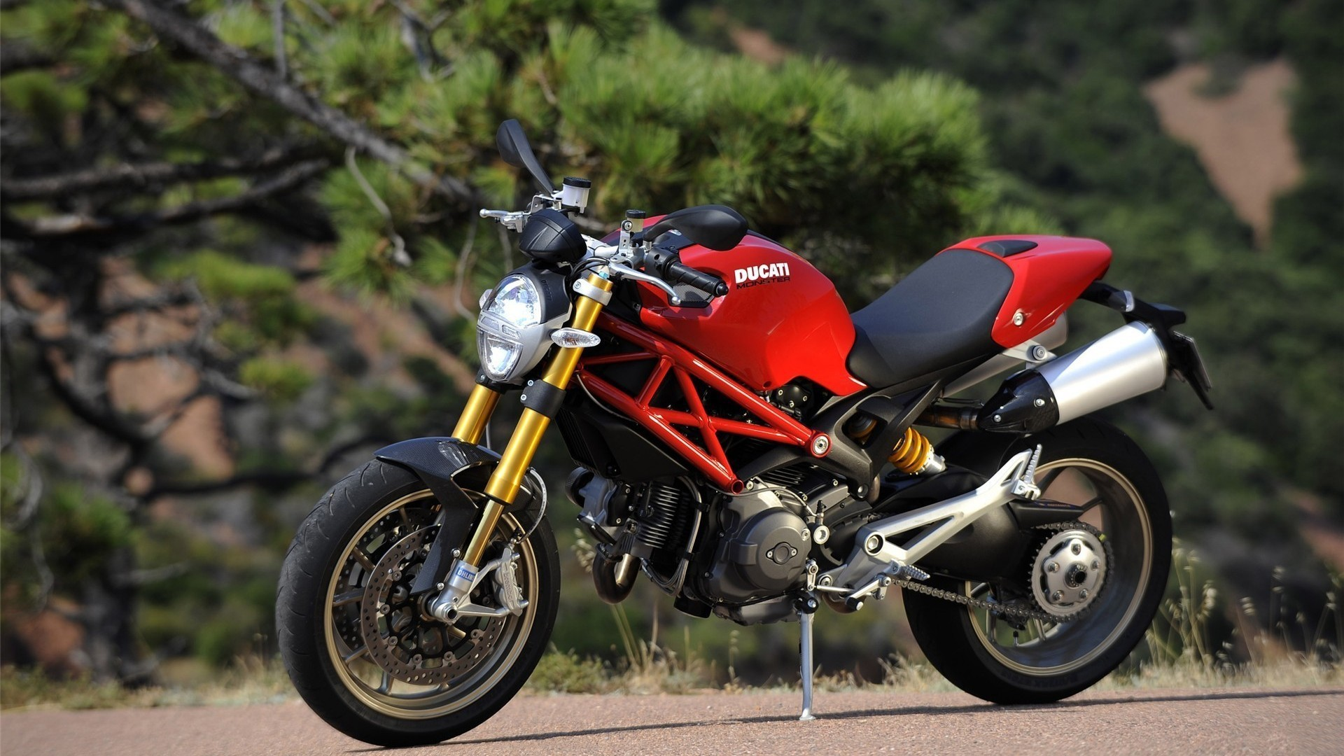 Ducati vehicles motorbikes ducati HD Wallpaper