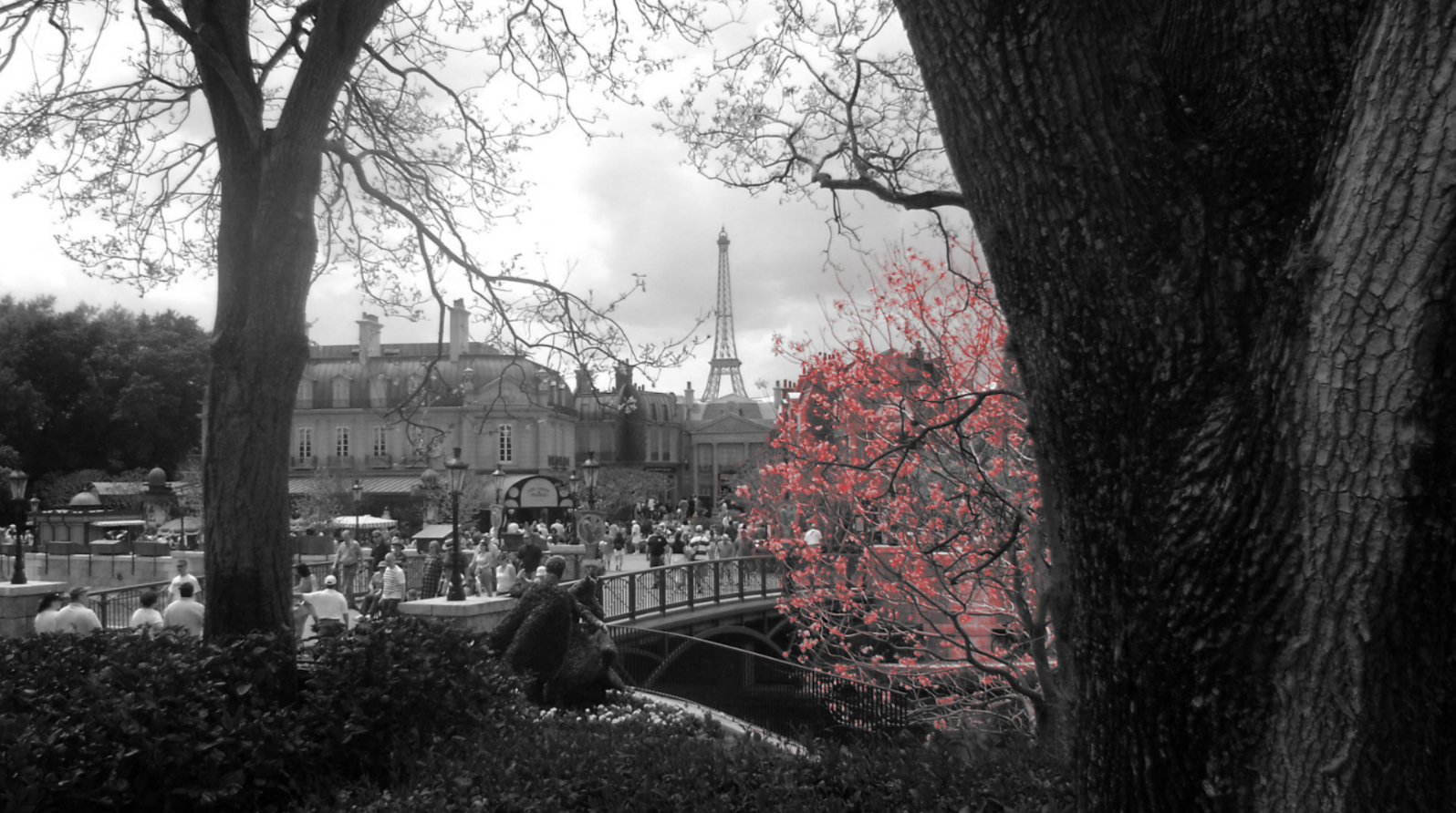 Eiffel Tower Paris Trees HD Wallpaper